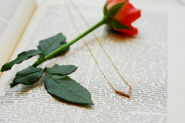 V Necklace with Rose 1.jpg